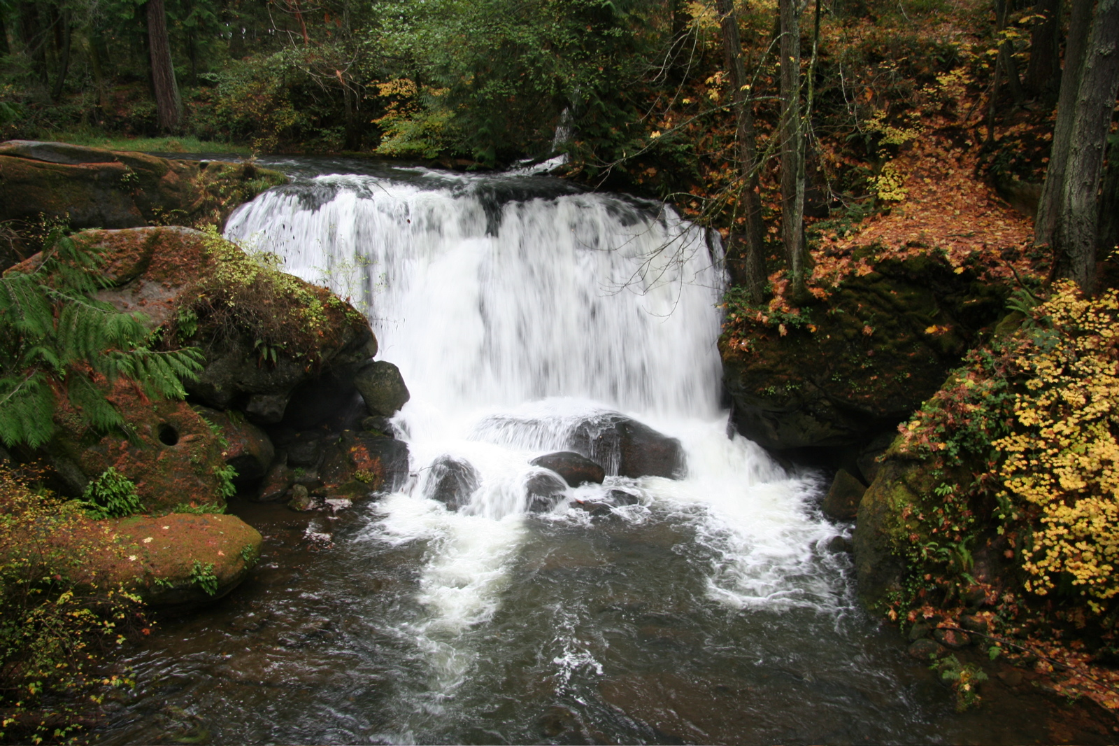 Beautiful Waterfall in Bellingham, Washington