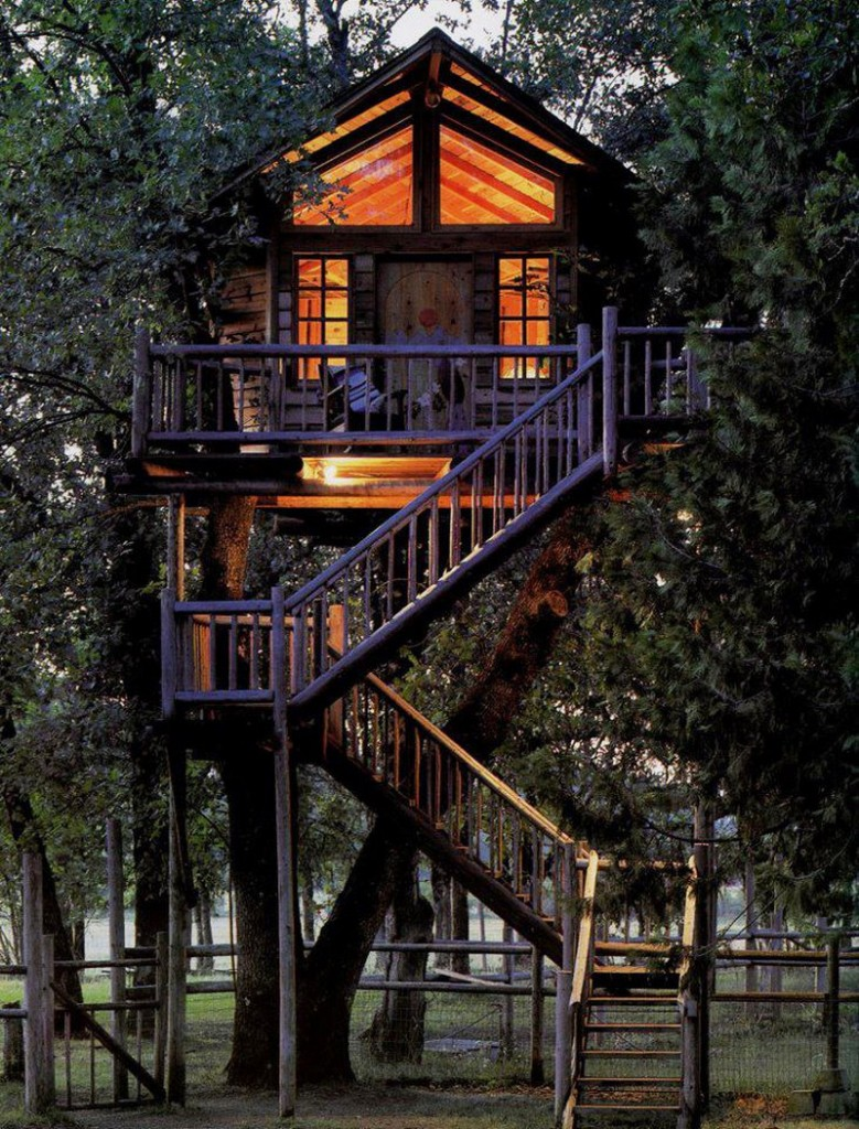 Peacock Perch Treehouse
