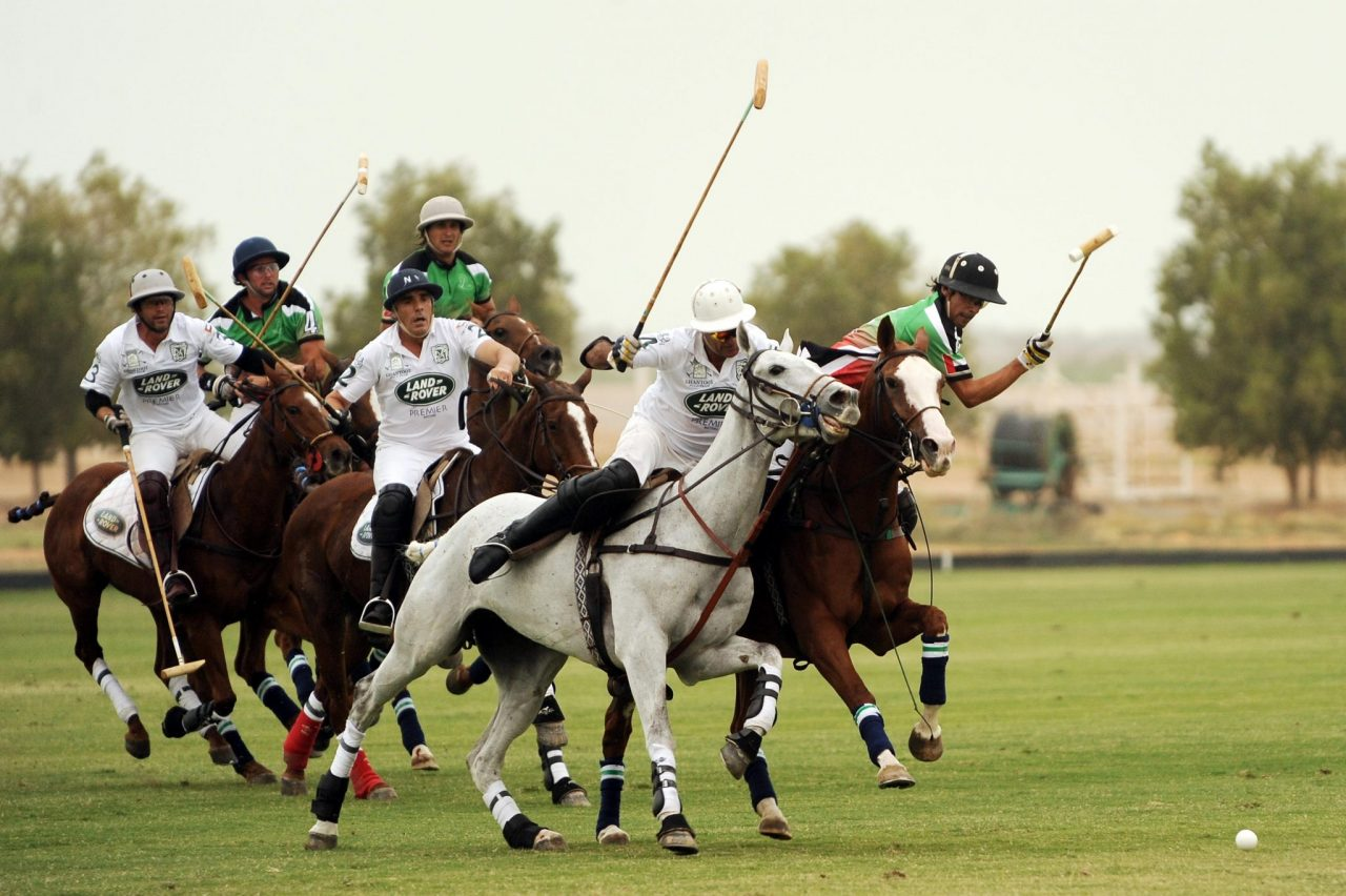 Sport of Kings: Polo in Newport, Rhode Island