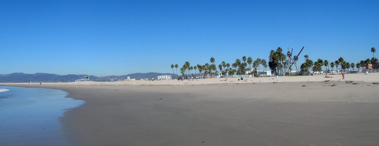 Venice Beach In A Day
