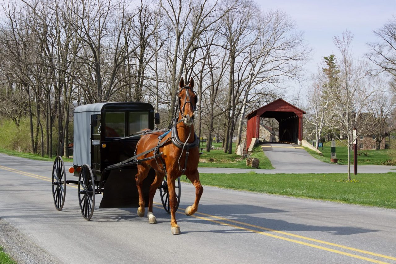 Explore Amish Country