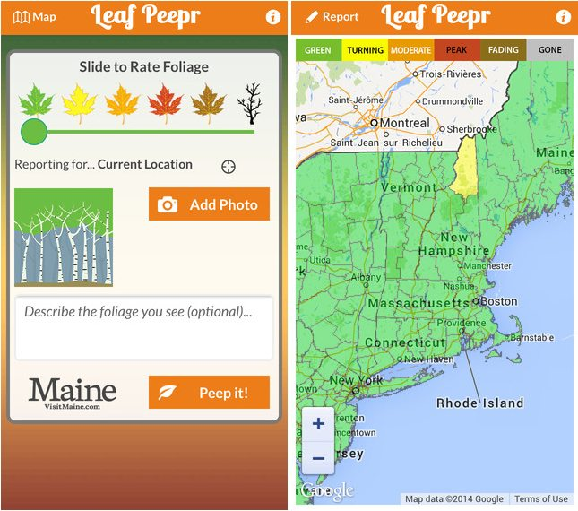 Fall-Foliage-App-Leaf-Peepr