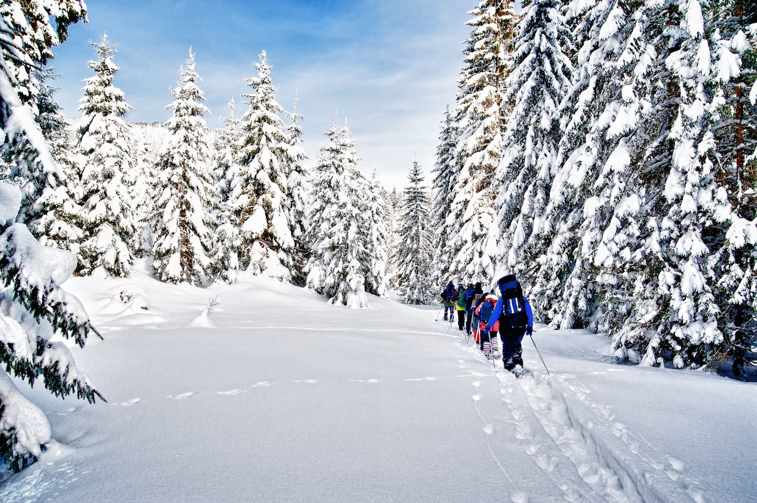 Three Places to Enjoy Snowshoeing this Winter