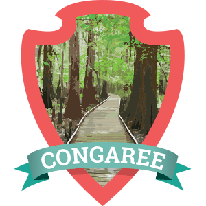 Congaree National Park Travel Guide