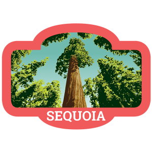 Sequoia Badge