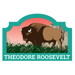Theodore Roosevelt Badge