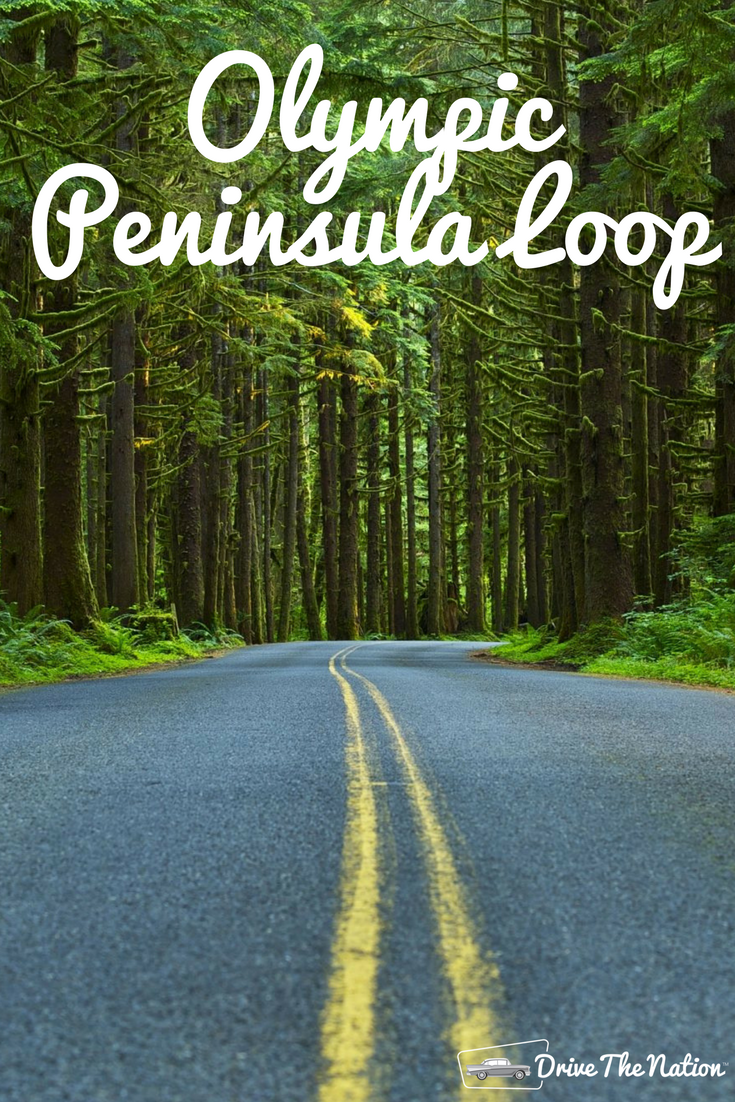 The Olympic Peninsula Loop is a scenic drive around western Washington State. Explore rainforests and incredible sights on this drive!