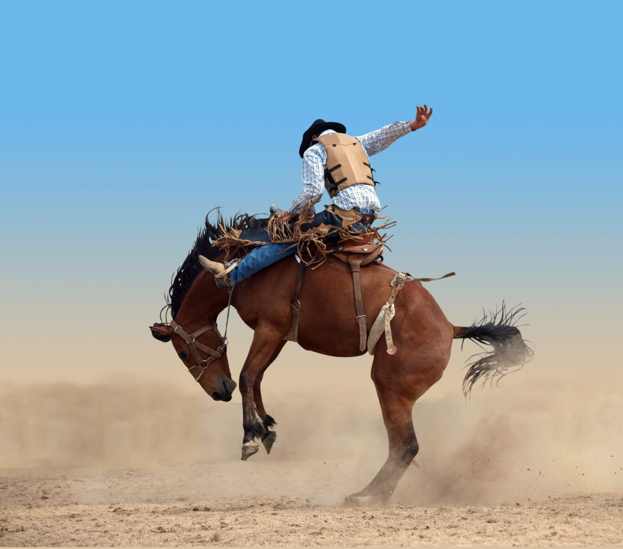 Top Rodeos in the U.S.