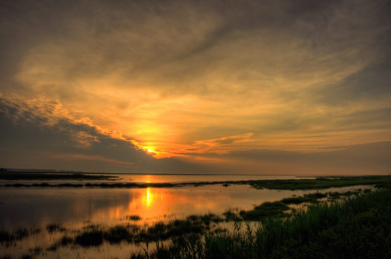 Sunrise at Bombay Hook Wildlife Refuge