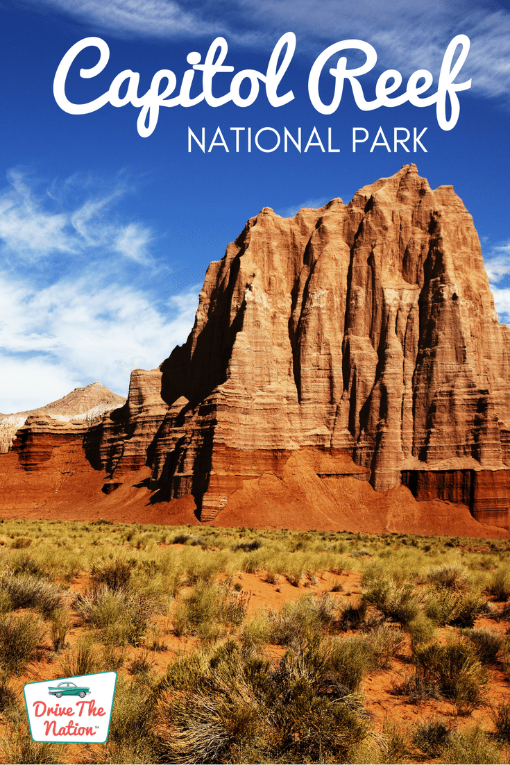 Red rock formations, petroglyphs and pick-your-own fruit!