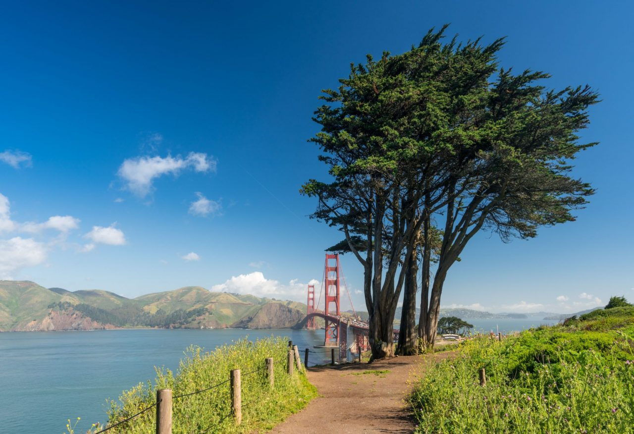 Marin Headlands at Golden Gate Park