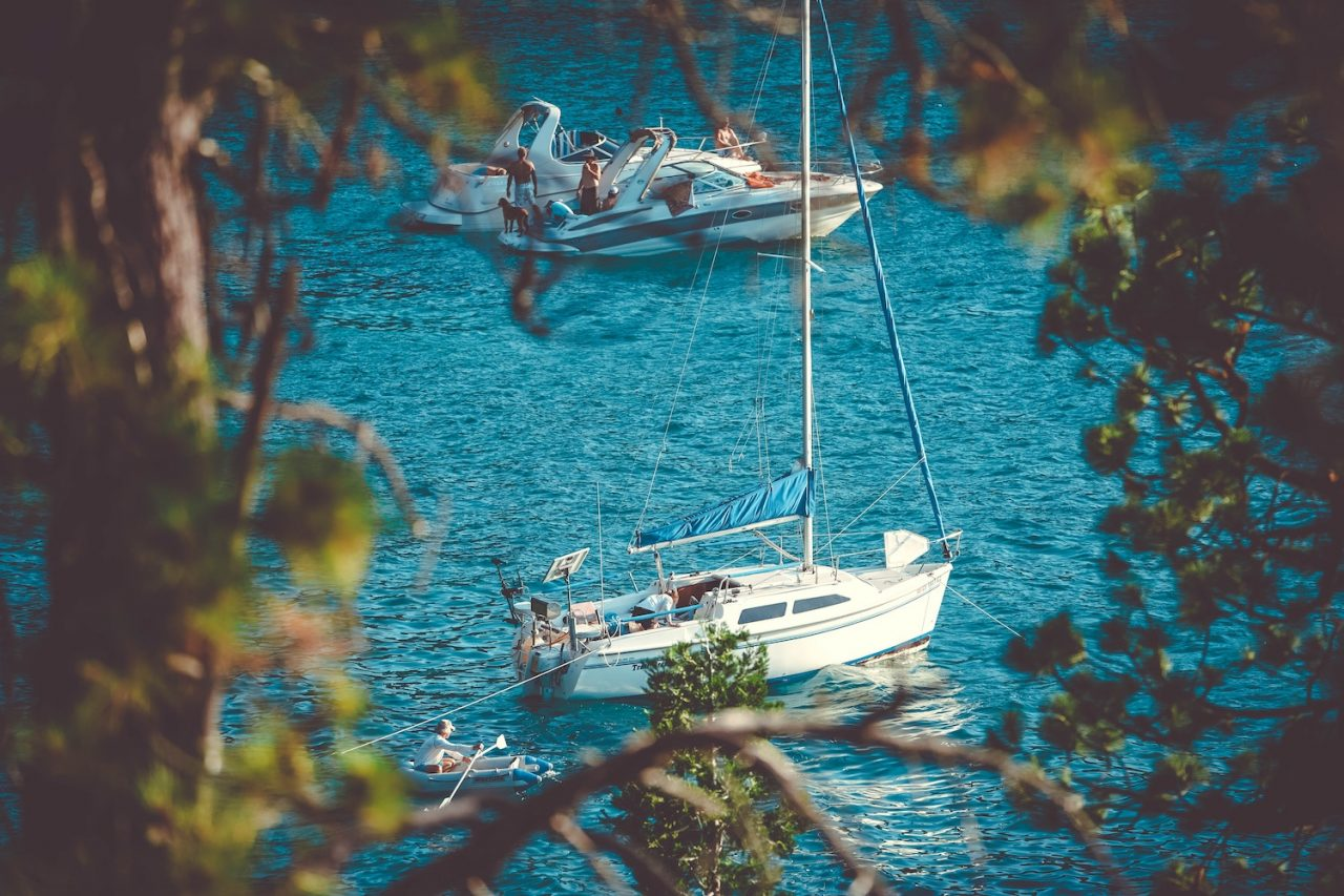 Boats through the trees at Lake Tahoe