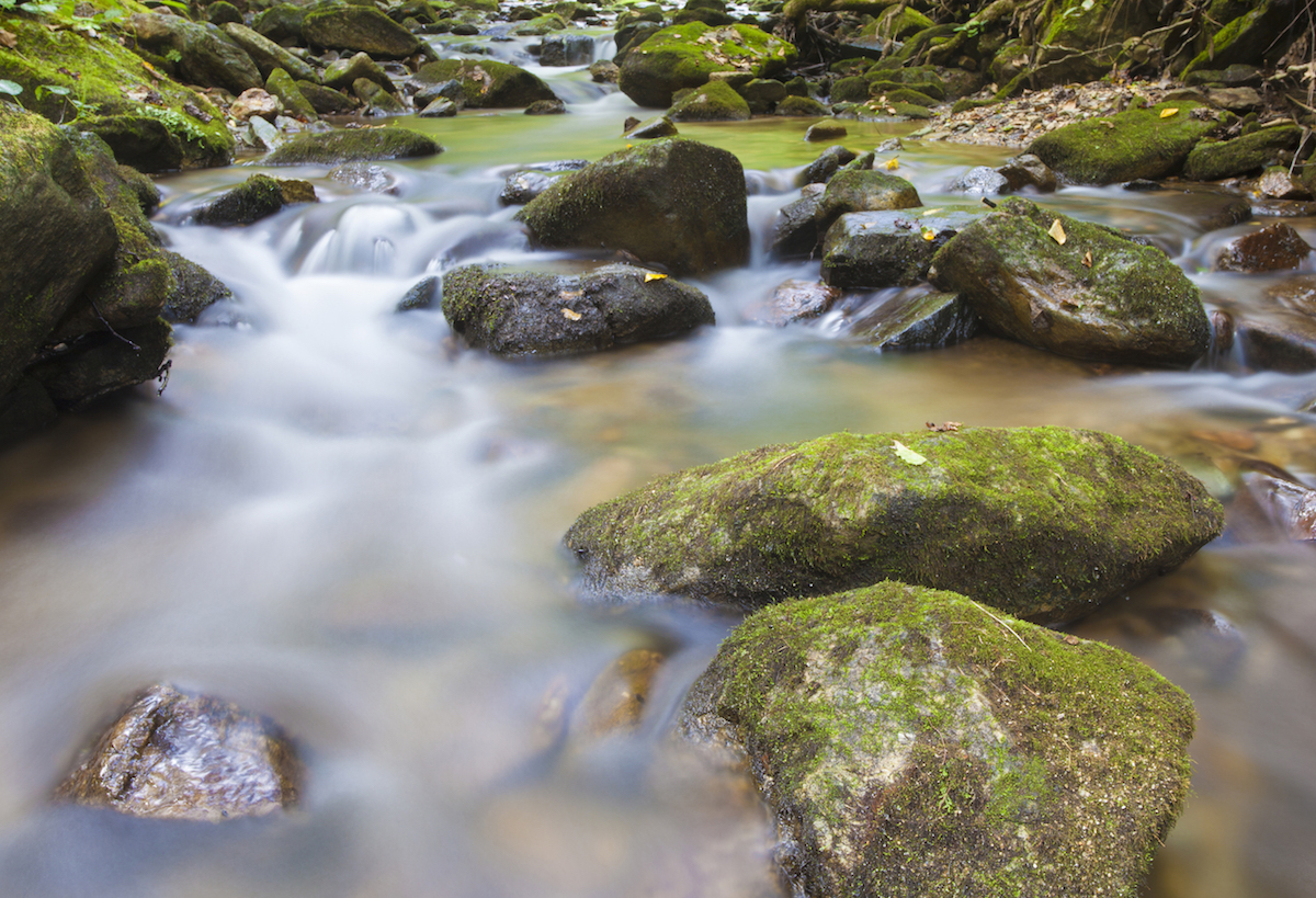 Water running over rocks on Pisgah National Forest in North Carolina