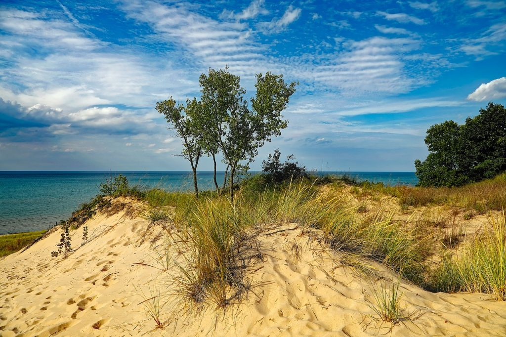 blue skies, water and greenery near the Indiana sand dunes