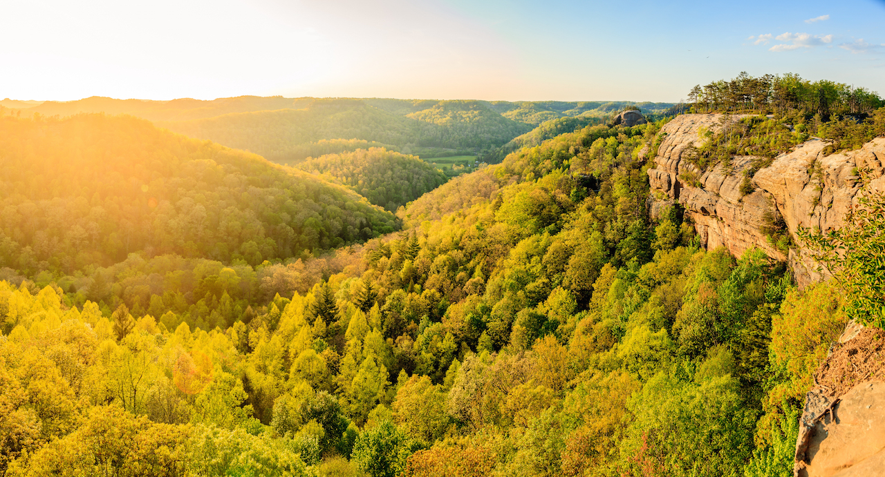 Daniel Boone National Forest Drive The Nation
