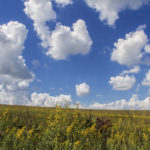 Tallgrass Prairie National Preserve