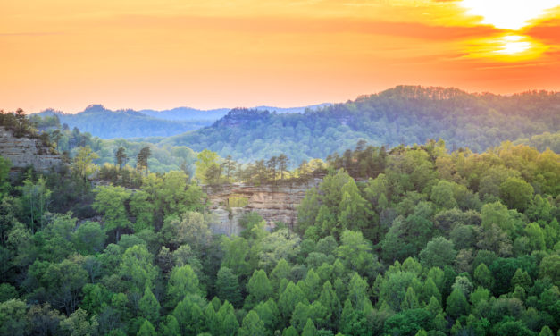 Exploring Red River Gorge