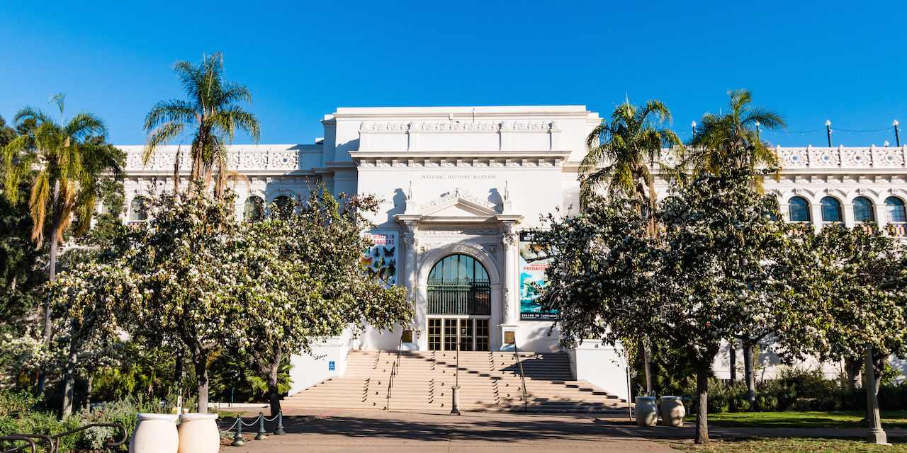 Image result for san diego natural history museum