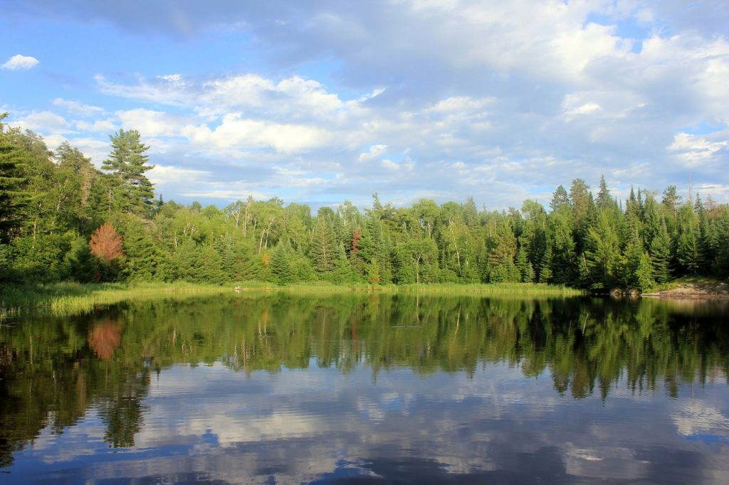 lots of greenery inside the Voyageurs National Park. Blue skies and deep blue waters