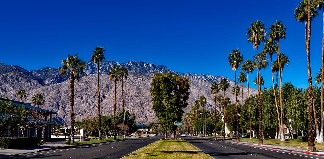 Quick Guide to Palm Springs