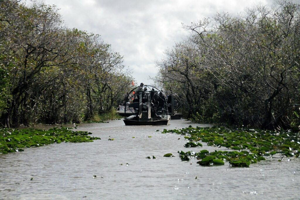 airboat on the water in the mangroves of the Everglades